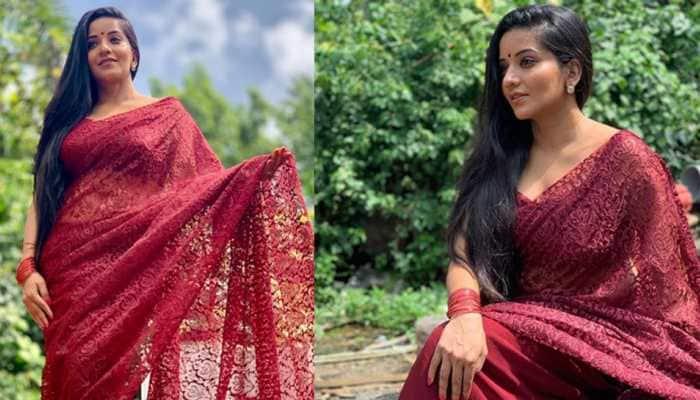 Monalisa flaunts her flawless beauty in a maroon net saree—Photos