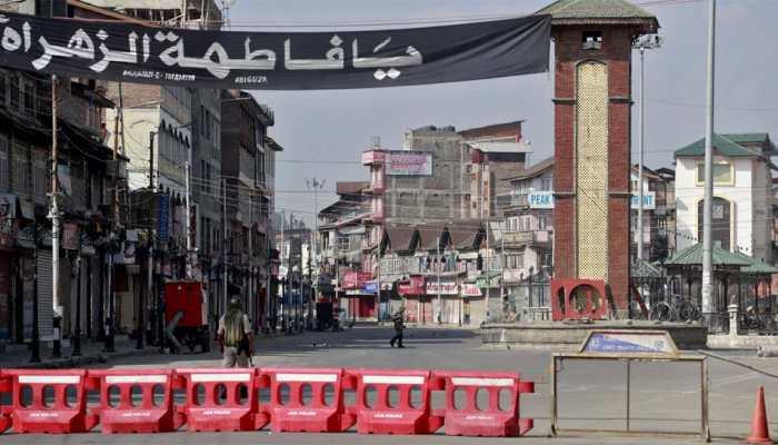 EU Parliament backs India on Jammu and Kashmir, says Pakistani terrorists target Europe