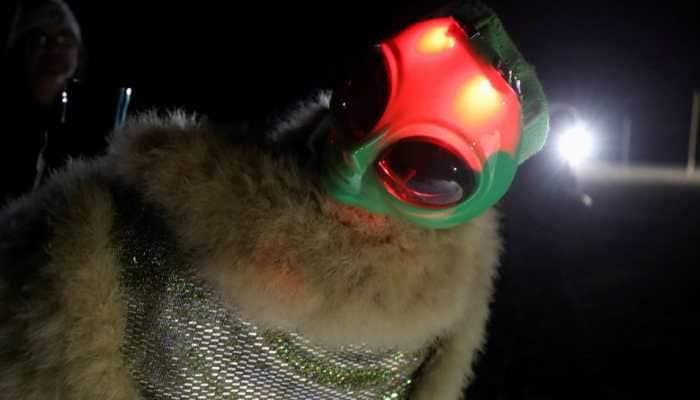 In Nevada desert, Area 51 raid lures festive UFO hunters; three arrested