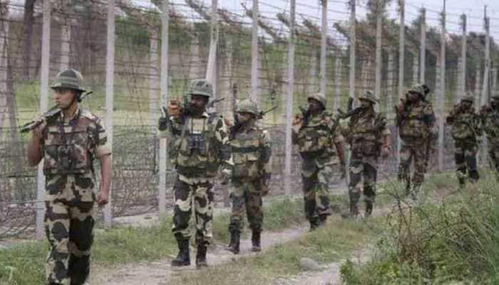 Terrorist activities spotted in Pakistan's border district near Kartarpur Sahib Gurdwara: BSF sources