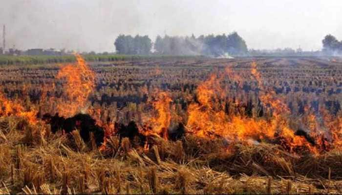 Stubble burning must stop, penalise Gram Pradhans if they fail to act: Supreme Court