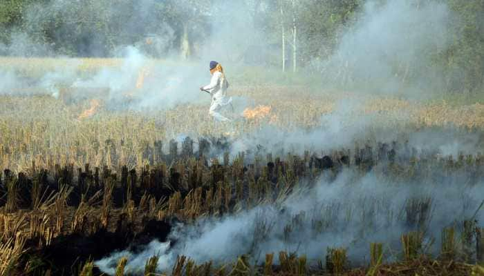 As Delhi battles air pollution, SC slams Punjab govt for failing to tackle stubble burning