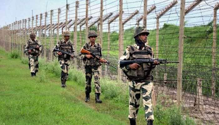 Pakistan intruder shot dead in Jammu and Kashmir's Samba sector