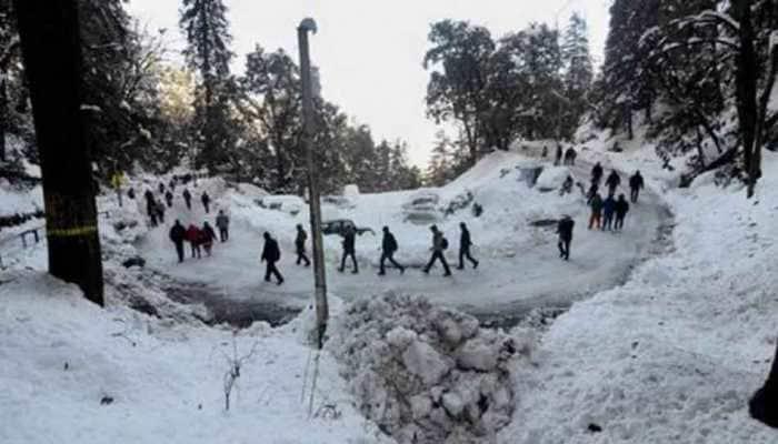 Cold wave grips Himachal Pradesh, Uttar Pradesh, disrupts normal life
