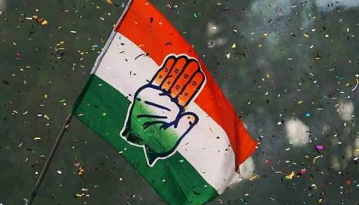 Congress sets up committees for better coordination between party and state government