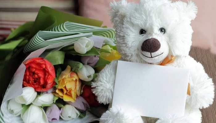 Teddy Day 2020: You can celebrate Valentine week with these gifts ideas