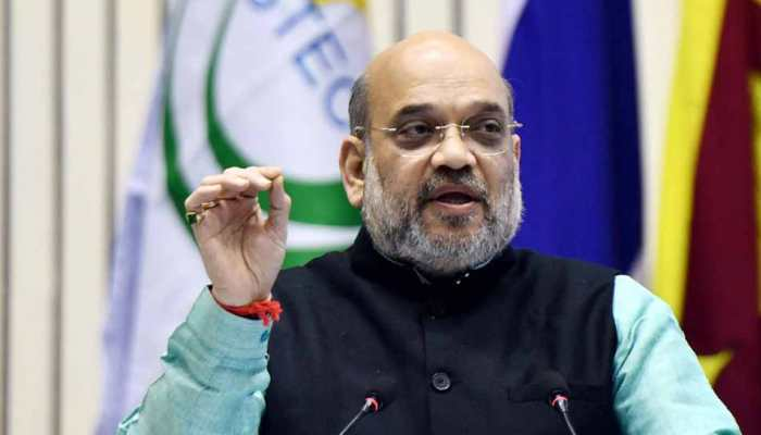 Hate speeches like 'goli maro', 'Indo-Pak match' may have resulted in BJP's defeat in Delhi Assembly election: Amit Shah