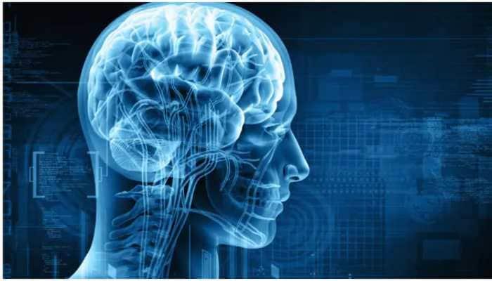 Know how brain activity evolves fear into anxiety