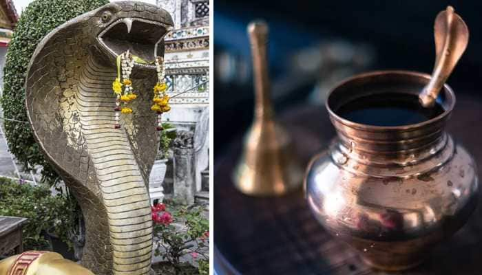 Nag Panchami 2020: How to perform special puja on this day