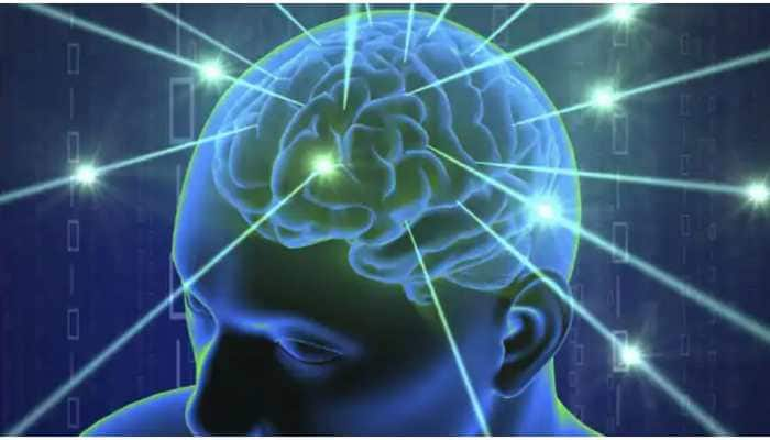 Brain protein linked to seizures, abnormal social behaviours, say researchers