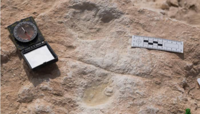 Oldest human footprints found in dunes of northern Saudi Arabia