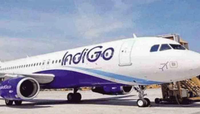 Bird hit forces Delhi-bound Indigo flight to return to Mumbai