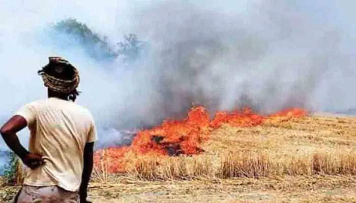 COVID-19: Delhi High Court issues notice on plea to stop stubble burning in Punjab, Haryana