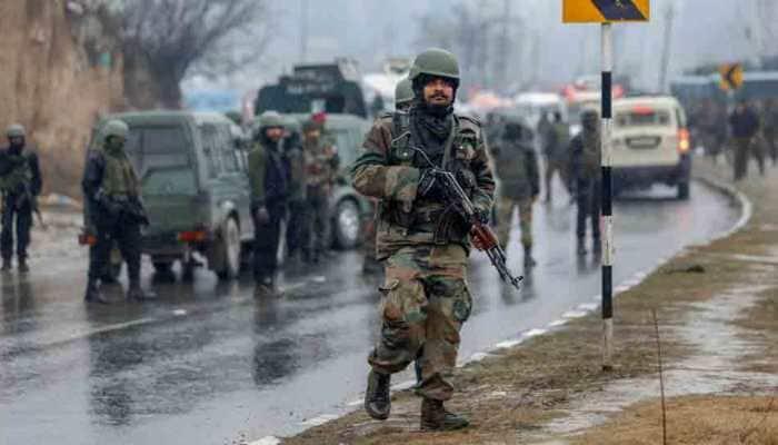 Pulwama attack: Pakistan minister brags 'Ghar me ghus ke maara', calls it 'great achievement' of Imran Khan govt