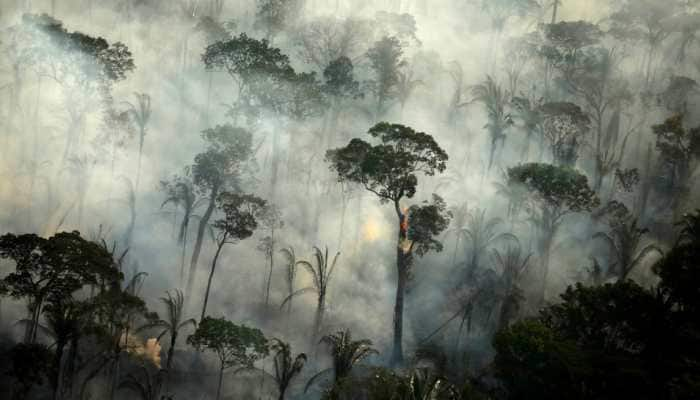 Fires in Brazil's Amazon rainforest surge in October