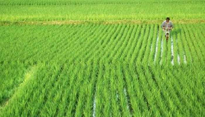 PM Kisan 7th instalment update: Disbursals coming on this date, here's how to check your name