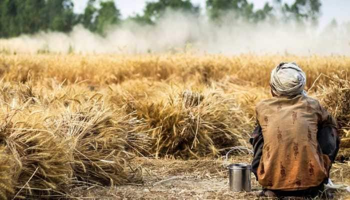 'Kisan Rail' services may be expanded in Union Budget 2021 to reach farmers