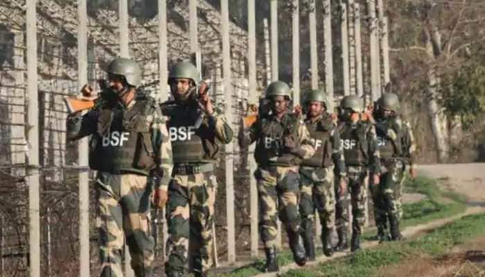 BSF detects another tunnel along Indo-Pakistan border in J&K, second in 10 days