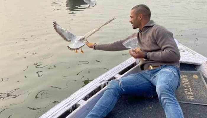 Chargesheet filed against Shikhar Dhawan in Varanasi court for flouting bird-flu guidelines