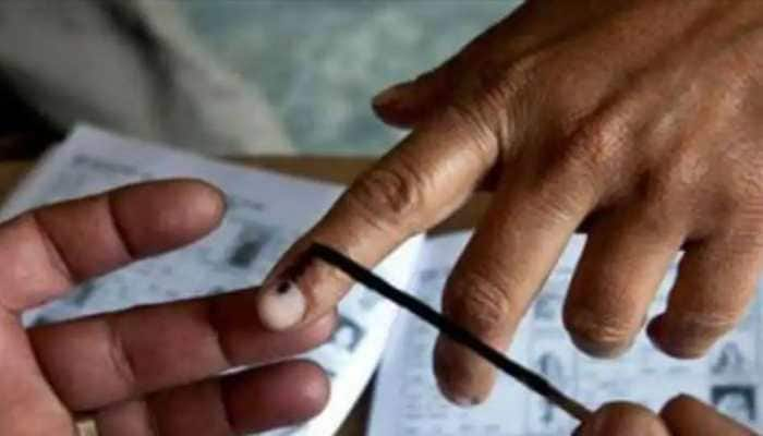 Andhra Pradesh Gram Panchayat elections underway; check Phase 1 poll districts