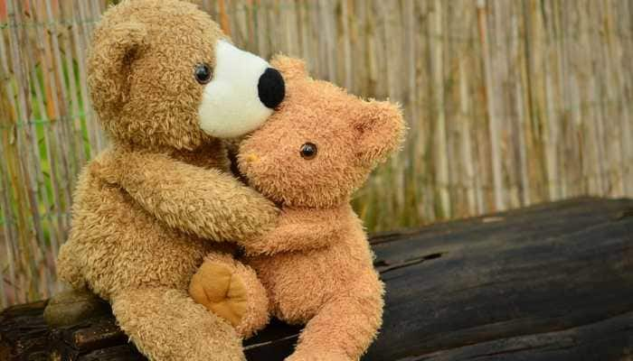 Valentine's Week 2021: Cutest ways to celebrate Teddy Day with your loved ones!
