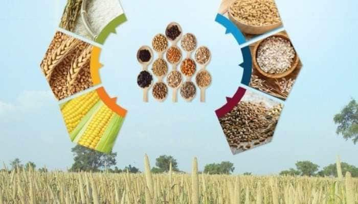 UNGA adopts India-backed resolution to declare 2023 as International Year of Millets, PM Narendra Modi expresses gratitude