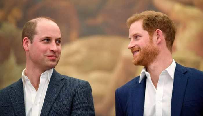 Prince Harry, Prince William to reunite at Princess Diana memorial despite tensions