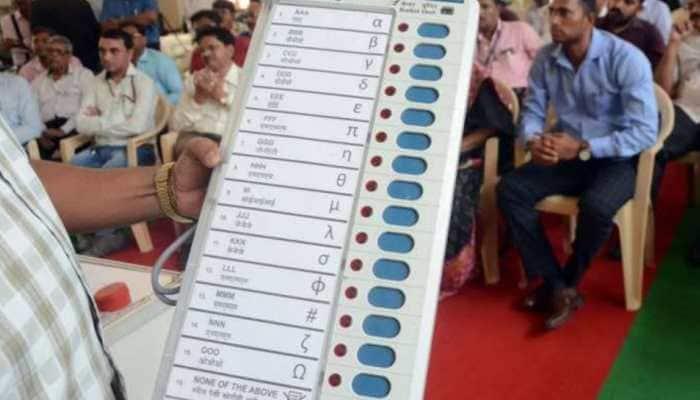 Karnataka by-elections: 30 candidates in fray for Lok Sabha, legislative Assembly polls