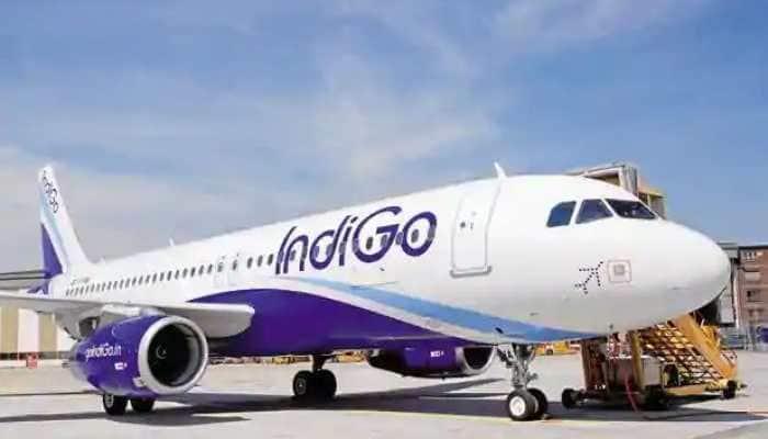 IndiGo flight operations at Goa airport hit after staff go on strike