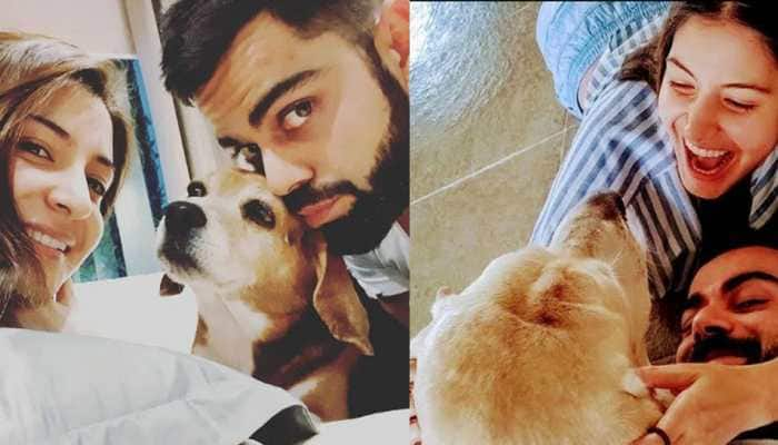 Anushka Sharma and Virat Kohli's 'priceless moments' together in this unseen video proves they are ultimate 'pet lovers' - Watch