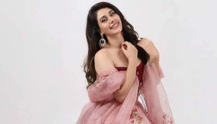 After Aamir Khan, Loveyatri actress Warina Hussain quits social media!