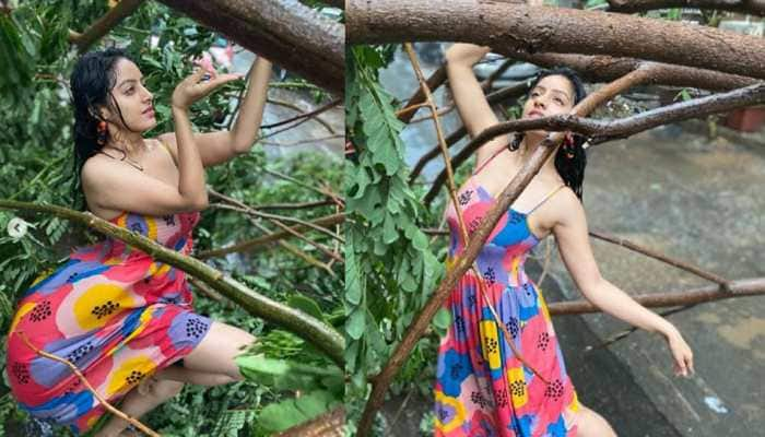 TV actress Deepika Singh MASSIVELY trolled for dancing and posing with a fallen tree amid cyclone Tauktae destruction - Watch