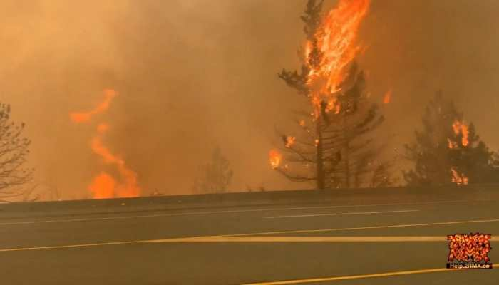 Wildfire guts town in Canada, more than 1,000 people evacuated